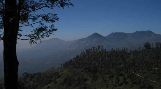 Sri Lanka: Flucht aus Colombo über die Berge zu den Elefanten