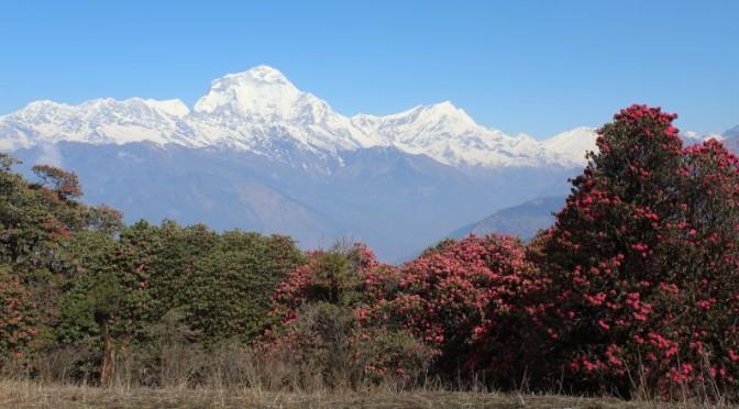 Annapurna Schnuppern!