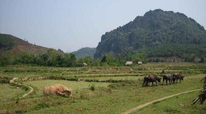 Reise von Nord-Laos in die Chinesiche Provinz Yunnan, Teil 1