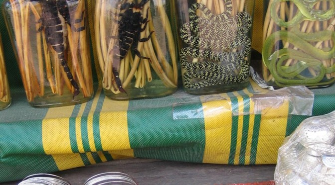 Kraut mit Schlangenschnaps – Lecker essen in China