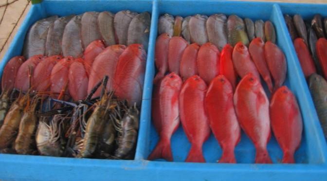 Kulinarik auf Singhalesisch