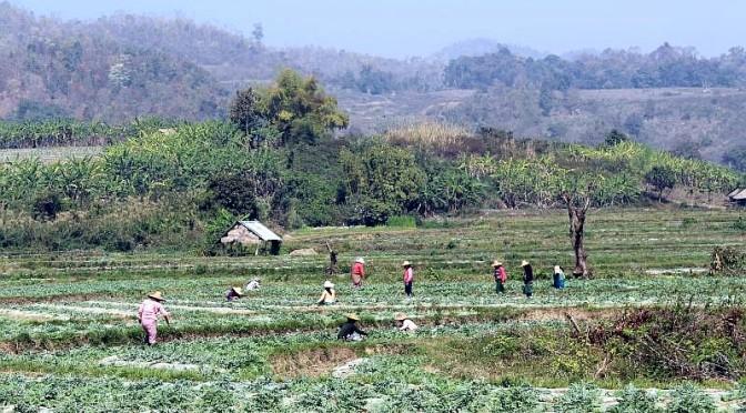 Von Mingun zur Abkühlung nach Pjin OO Lwin und Hsipaw im Shanstate