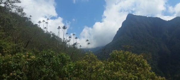 Valle de Cocoa, Kolumbien