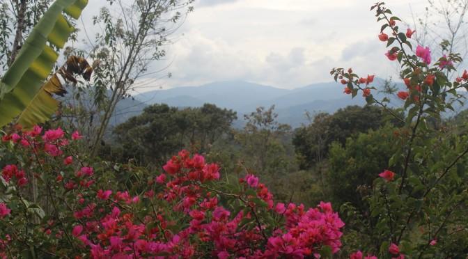 Eine Ruhe-Oase in der Natur: die Eco Finca El Maco in St. Agostin, Kolumbien
