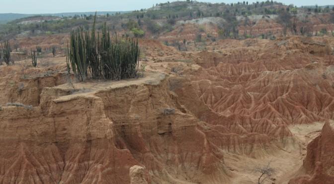 Märkte in Sylvia, geheimnisvolle Statuen in St. Agostin und die Tatacoa-Wüste in Kolumbien