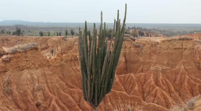 Tatacoa Wüste, Kolumbien