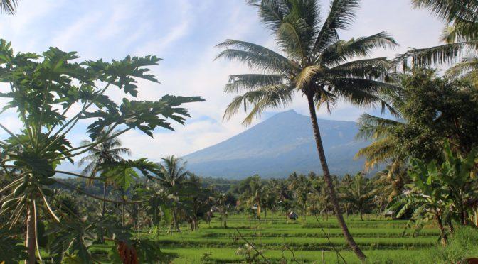 Nach 8 Jahren Weltumsegelung fast den Garten Eden in Lombok gefunden