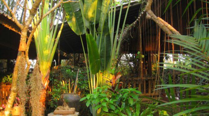 Nachhaltigkeit Thai-Style mit Leidenschaft & Gourmet-Genüssen im Khum Lanna Eco-Resort, Thailand